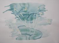 http://garolera.com/files/gimgs/th-19_16_herbarium-dibujo1017_v2.jpg
