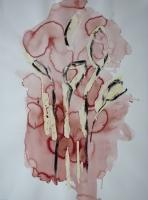 http://garolera.com/files/gimgs/th-19_16_herbarium-dibujo1018_v2.jpg