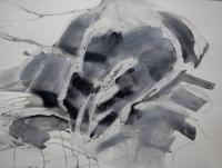http://garolera.com/files/gimgs/th-19_16_herbarium-dibujo1023_v2.jpg