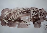 http://garolera.com/files/gimgs/th-19_16_herbarium-dibujo1030_v2.jpg